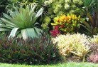 Allenview Bali style landscaping 6old